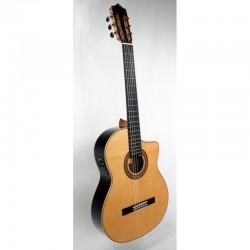 Guitarra MARTINEZ MFG-RS...