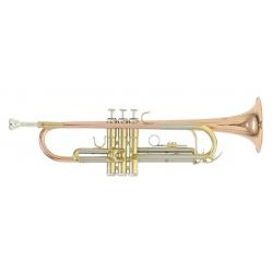 trompetas ROY BENSON TR202G