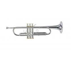 trompetas ROY BENSON CHARLI...