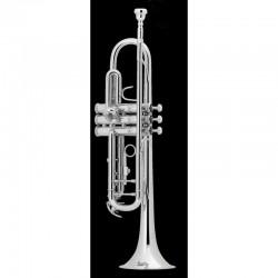 trompetas BACH Sib. TR500S....